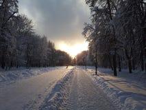 Solnedgång över vägen i vinterstaden royaltyfri bild