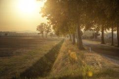 Solnedgång över vägen - Tuscany Royaltyfria Bilder