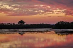 Solnedgång över vatten - Merritt Island Wildlife Refuge, Florida arkivfoto