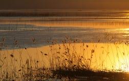 solnedgång 01 Fotografering för Bildbyråer