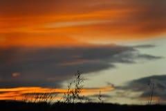 solnedgång Royaltyfri Foto