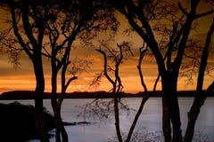 solnedgång 2 Royaltyfria Foton