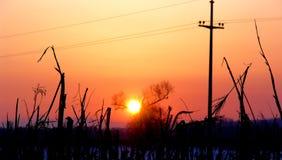 solnedgång royaltyfria bilder