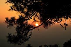 Solnedgång och skugga Arkivbilder
