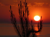 solnedgång 2 fotografering för bildbyråer