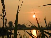 Solnedgång Ameiden, Nederländerna Royaltyfria Bilder