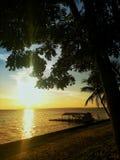 Solnedgång av amasonen royaltyfri bild