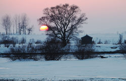Solnedgång av snöfältet Royaltyfria Foton