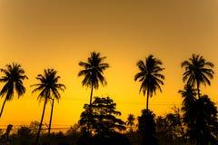 Solnedgång av sommaren Royaltyfri Fotografi