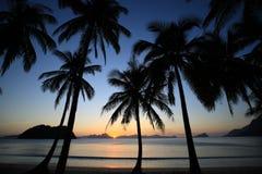 Solnedgång av vändkretsön Arkivbild