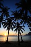 Solnedgång av vändkretsön Fotografering för Bildbyråer