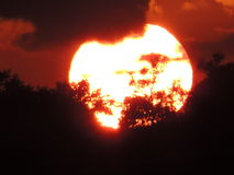 Solnedgång bak molnen i ett fält Royaltyfri Fotografi