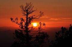 Solnedgång bak Mountiansen Royaltyfri Bild
