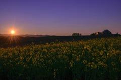 Solnedgång fältet på Biei Hokkaido, kontur Royaltyfri Bild