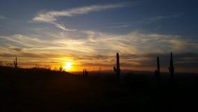 solnedgång för ökendubai dyner Royaltyfri Bild