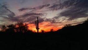 solnedgång för ökendubai dyner Arkivbild