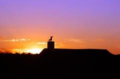 solnedgång för afrikan 01 arkivbilder
