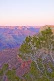 solnedgång för arizona kanjontusen dollar Royaltyfri Bild