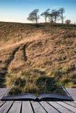 Solnedgång för bokbegreppshöst över bygdlandskap Arkivfoton