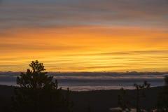 Solnedgång för konungkanjonnationalpark Arkivfoto
