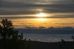 Solnedgång för konungkanjonnationalpark Royaltyfri Bild