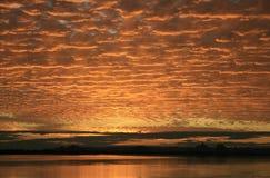 solnedgång för mackerelsky Fotografering för Bildbyråer