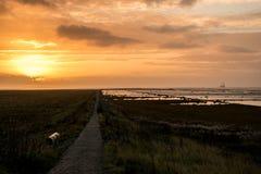 Solnedgång för Nordsjön/German hav på Friedrichtskoog fotografering för bildbyråer