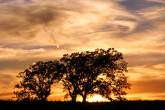 solnedgång för preserve för jarrettnaturprärie royaltyfri foto