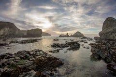 Solnedgång för sanddollar Royaltyfri Foto