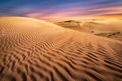 Solnedgång för sanddyn arkivbilder
