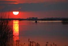 solnedgång för sava för belgrade fiskareflod Royaltyfria Bilder