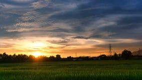 Solnedgång för stadslandskapsikt över risfältkolonilantbruk med huset och telekom royaltyfri foto