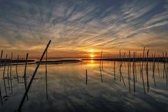 Solnedgång för tidig afton på marsklorna arkivfoto