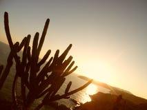 Solnedgång från den LaEntrega fyren, Huatulco, México Royaltyfri Fotografi