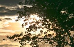 Solnedgång från fönstret av sovrummet Arkivbild