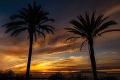 Solnedgång från havet i Tenerife royaltyfri bild