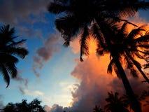 Solnedgång från kerala arkivfoto