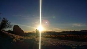 Solnedgång i öknen royaltyfri bild