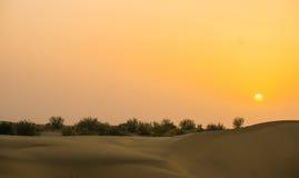Solnedgång i öknen Royaltyfri Foto