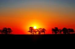 Solnedgång i Afrika. Royaltyfri Foto