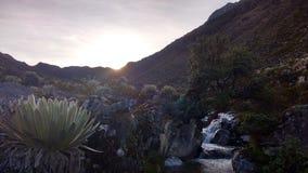 Solnedgång i Anderna Royaltyfria Bilder