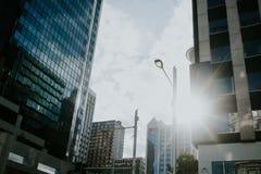 Solnedgång i Auckland Arkivbild