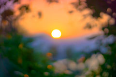 Solnedgång i bokeh Arkivfoto