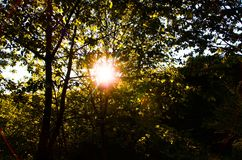 Solnedgång i Bourgogne arkivbilder