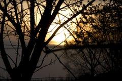 Solnedgång i bygden Arkivfoto