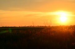 Solnedgång i byn Royaltyfri Fotografi