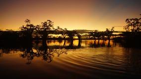 Solnedgång i den Cuyabeno lagun arkivbild