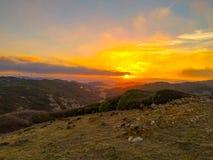 solnedgång i den Menorcan bygden arkivbild