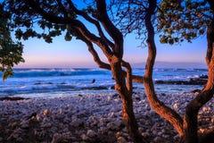 Solnedgång i den stora ön av Hawai'i Royaltyfria Bilder