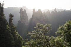 Solnedgång i den Zhangjiajie medborgaren Forest Park Arkivbilder
